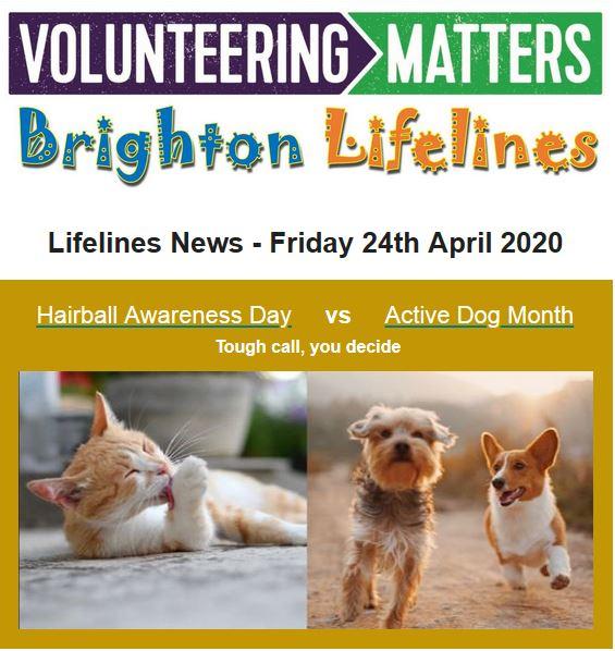 Lifelines News - Friday 24th April 2020
